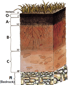Understanding that soil is like cake could lead to tastier for Soil profile definition