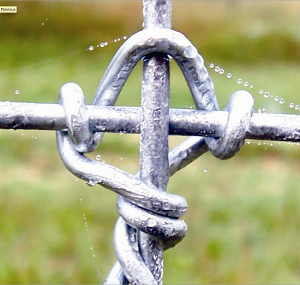 "Close up of the ""powerlock knot"""