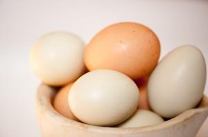 Valdale-Farm-Eggs-1005-300x199