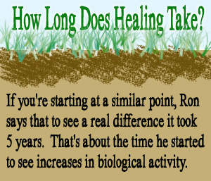 How Long Does Healing Take?
