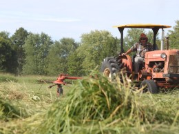 Switchgrass harvest at Meach Cove Farm in Vermont