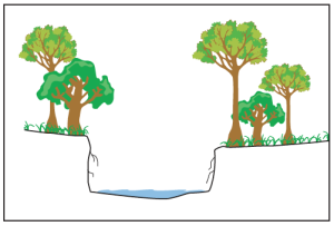 Sketch of stream cross section in a wooded corridor.