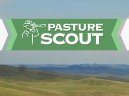 PastureScoutFeaturedImage