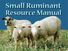 The Toolbox includes the 978 page Small Ruminant Resource Manual.  You can download it for free and read it with Adobe Reader version 6 or later, by heading over to the Small Ruminant Toolbox Page.  Just click to get there.