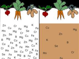 nutrientdepletion-e1412297681357