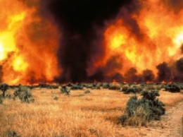 Fire in cheatgrass. Photo courtesy of Mike Pellant, Bureau of Land Management