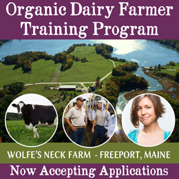 Dairy-Program-OnPasture-Website-Ad