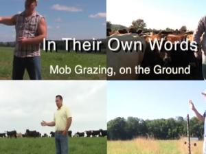 Mob Grazing Video Series