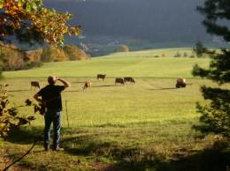 Meet-farmers