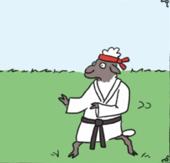 Ninja Ewe