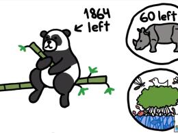 Should we let pandas go extinct?