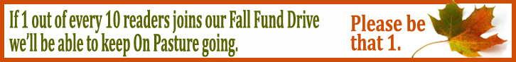 Fall Fund Raiser Banner