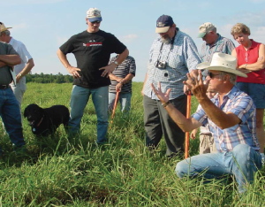 A bison farmer in the Maryland Grazers' Network describes the use of warm-season grasses in his grazing system.