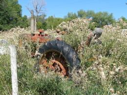 Bills Tractor