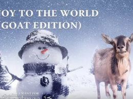 Joy to the World sung by Goats