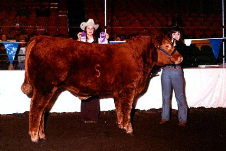 1973_int_steer