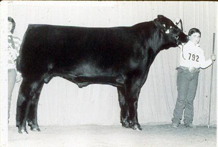 1985_houston_champion