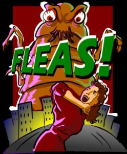 fleas-350