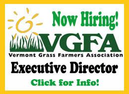 vgfa-exec-director