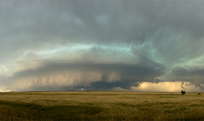 Great Plains / Grandes plaines. Buffalo Gap National Grassland, South Dakota, USA. Photo courtesy of Cyril Albrecht.