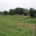Hardwick VT Farm with pasture and forest for sale